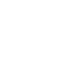 60 Seconds to Survival Disaster Triage