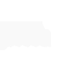 Trivium Interactive