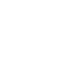 Mass Digital Games Institute